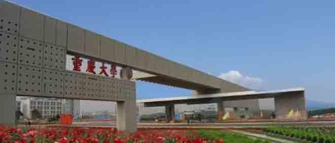 重庆大学.jpg